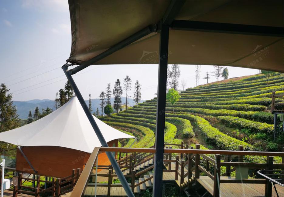 茶园酒店帐篷